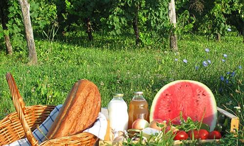 Piknik-kosarica-q
